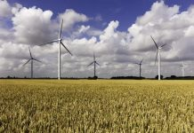 Renewables generated more than 25% of UK's electricity in Q1