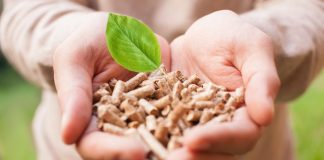 Rotherham biomass power plant inaugurated