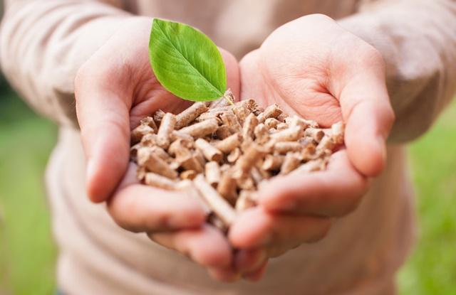 Rotherham biomass power plant inaugurated
