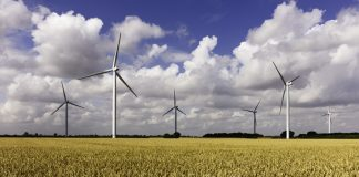 Funding launched to develop rural renewables in Humber