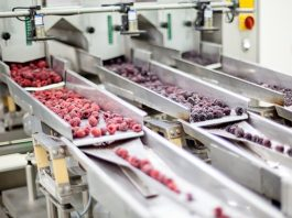 Production Growth in food & drink manufacturing despite uncertainty